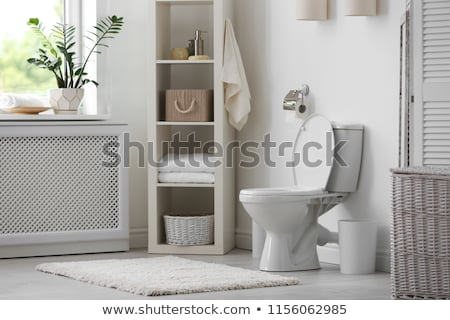White Toilet Bowl In Bathroom Stock photo © AndreyPopov