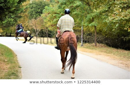 back view portrait of a stylish young couple riding stock photo © deandrobot