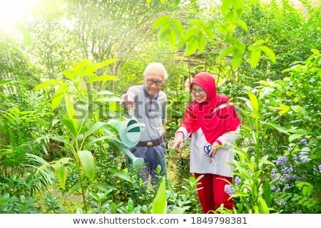 idős · férfi · tapsolás · tűzifa · kert · napos · idő - stock fotó © kzenon