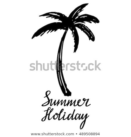 Nino dibujo palmeras superior vista color Foto stock © Sonya_illustrations