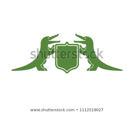 Krokodil keret illusztráció művészet zöld felhő Stock fotó © bluering