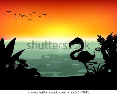 Silhouette scene with flamingo birds in the river Stock photo © colematt