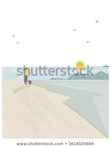 Сток-фото: женщину · пляж · закат · весны · сезон · трава