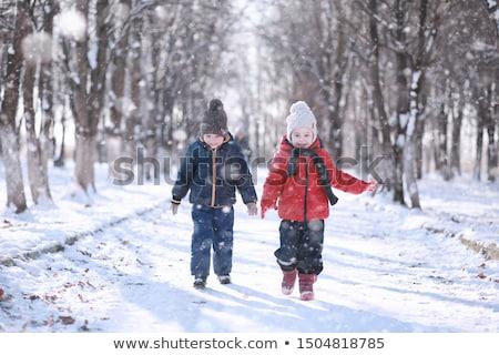 Сток-фото: счастливым · мало · мальчика · играет · снега · зима