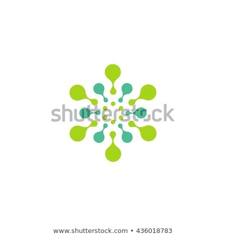 Absztrakt molekuláris kör logotípus kémia logo Stock fotó © kyryloff