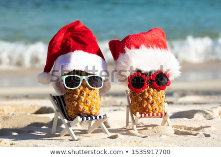 zonnebril · strand · ananas · dek · stoel - stockfoto © andreypopov