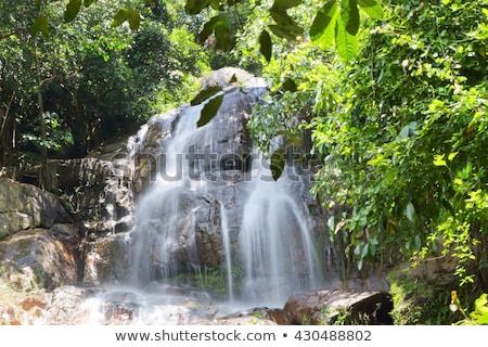 Wodospad wyspa Tajlandia lata dzień charakter Zdjęcia stock © bloodua