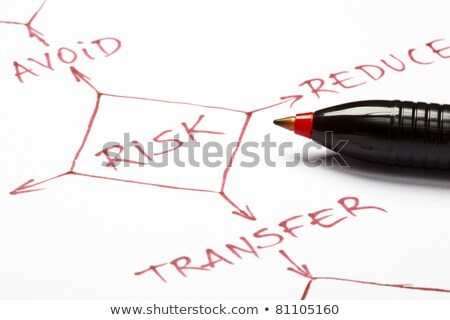 Risk management flow chart Stock photo © ivelin