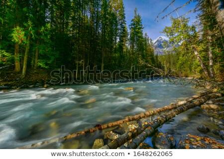 Curent vale frumos Imagine de stoc © photoblueice