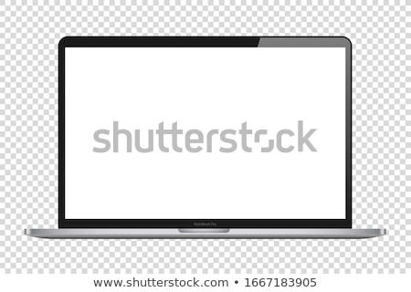 Képernyő kép panel monitor izolált fehér Stock fotó © nmarques74