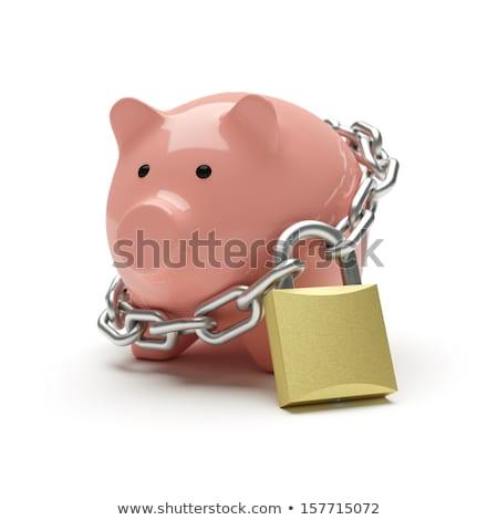 Persely zár otthoni pénzügyek Stock fotó © devon