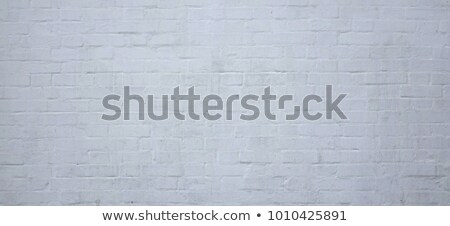 Grey Brick Wall SeamlessTexture. stock photo © tashatuvango