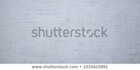 Zdjęcia stock: Szary · murem · starych · pęknięcia · brud