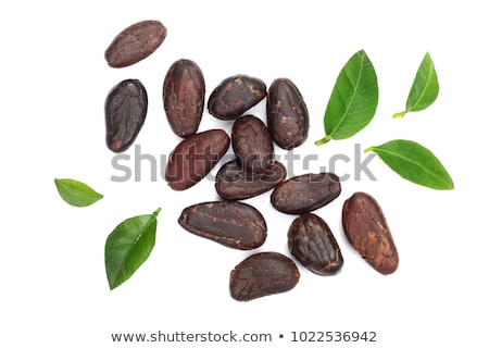 Foto d'archivio: Cacao Beans Isolated On White Background