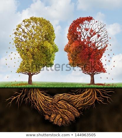 Equipe negócio dois outono árvores folhas Foto stock © Lightsource