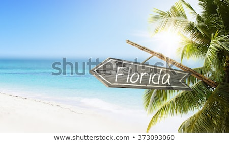 Florida vacaciones puesta de sol agradable naturaleza paisaje Foto stock © ArenaCreative