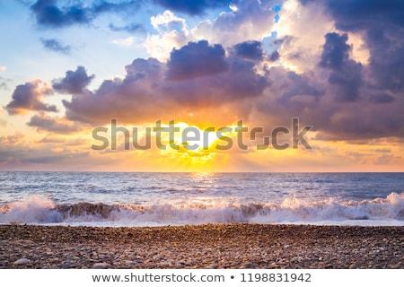 Tenger part tengeri csillag kagylók tengerpart fő- Stock fotó © stevemc