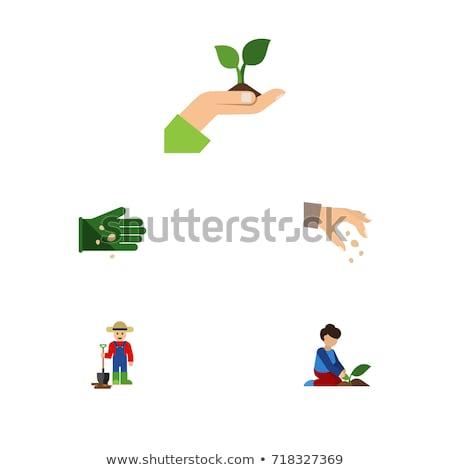 Stock fotó: Nő · kéz · vetés · mag · kertészkedés · kert