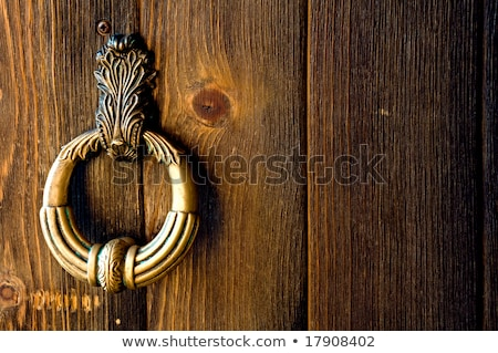 Vintage door knocker on wooden door stock photo © jaycriss