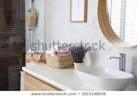 Washbasin in the bathroom Stock photo © maknt
