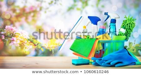 Colorato pulizie di primavera secchio acqua pochi vernice Foto d'archivio © EFischen
