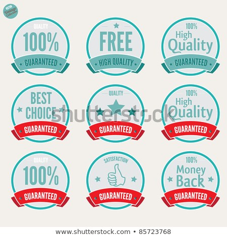 Warranty Guarantee Seal Square Vector Blue Icon Design Set Stock photo © rizwanali3d