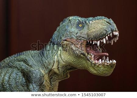 Realistic model of a Tyrannosaurus  Stock photo © amok