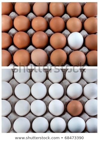 an egg brown into white eggs visible minority stock photo © flariv