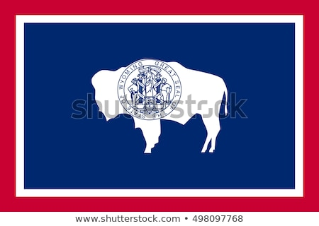 US state flag of Wyoming Stock photo © creisinger