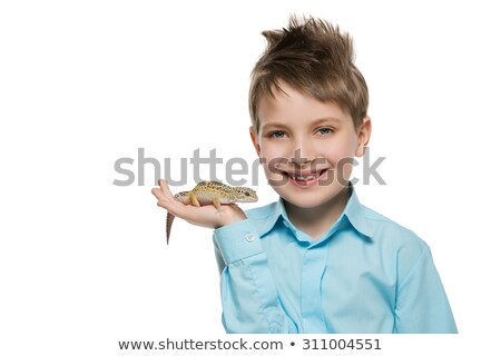 pequeno · amarelo · lagarto · ver · la - foto stock © svetography