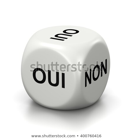 Yes or No French White Dice Stock photo © make
