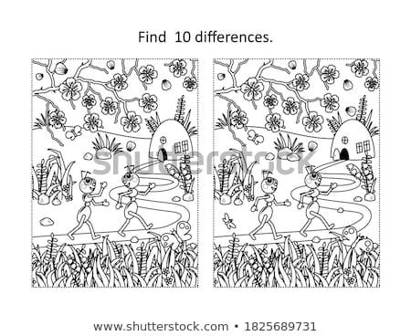 Plek verschil mieren spel kinderen taak Stockfoto © Olena