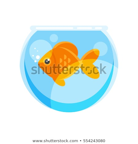 Fish in head Glass transparent. Vector illustration Stock photo © popaukropa