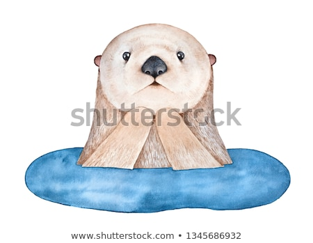 Surprised Cartoon Otter Stock photo © cthoman