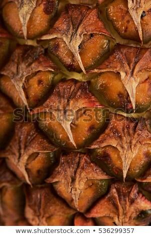 Közelkép fenyőfa alma barna bőr textúra makró Stock fotó © artjazz