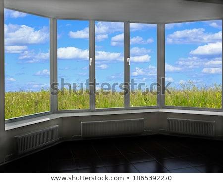 Fenêtre prairie herbe verte été isolé blanche Photo stock © Lady-Luck