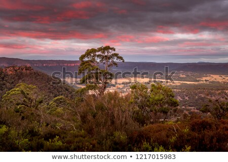 Clifftop sunset and valley views from Lithgow Stock photo © lovleah