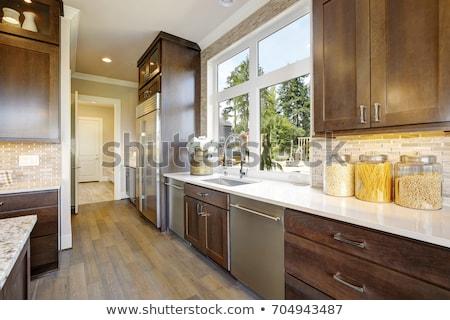Konyha fa mozaik rozsdamentes acél ház terv Stock fotó © iriana88w