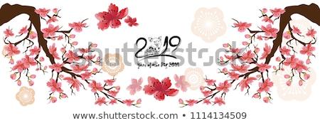 Kínai új év disznó virágmintás papír szalag hagyományos Stock fotó © cienpies