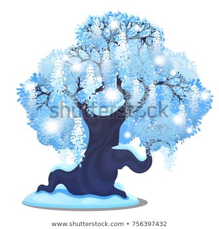 gelado · inverno · paisagem · céu · árvore - foto stock © lady-luck