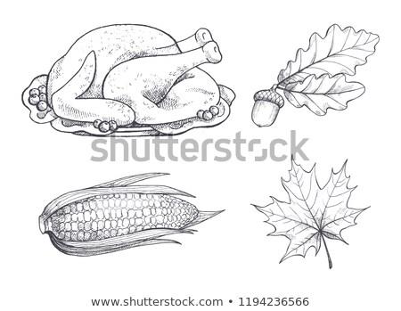 Törökország · hálaadás · hagyományos · edény · ikon · vektor - stock fotó © robuart