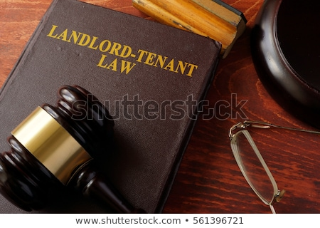 A law book with a gavel  - Tenancy Law Stock photo © Zerbor