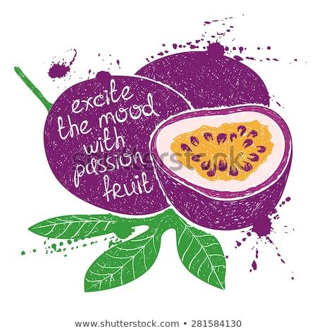 Vettore tropicali frutti passione frutta creativo Foto d'archivio © user_10144511