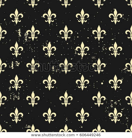 Classic texture pattern Vector. Floral ornament decoration old effect. Victorian engraved retro desi Stock photo © frimufilms