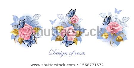 üç pembe güller kelebekler mavi altın Stok fotoğraf © blackmoon979