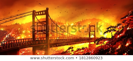 Wildfire lasu ilustracja ognia charakter krajobraz Zdjęcia stock © colematt