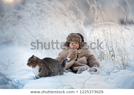 Little village on Christmas Eve 1 Stock photo © liolle