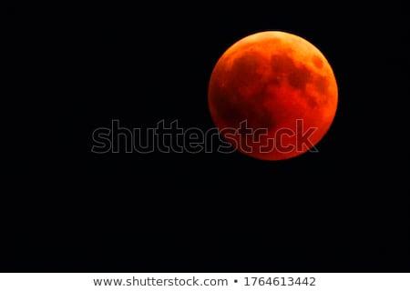 Vermelho lua ilustração céu paisagem Foto stock © Blue_daemon