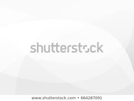 Branco cinza curva formas texto espaço Foto stock © SArts