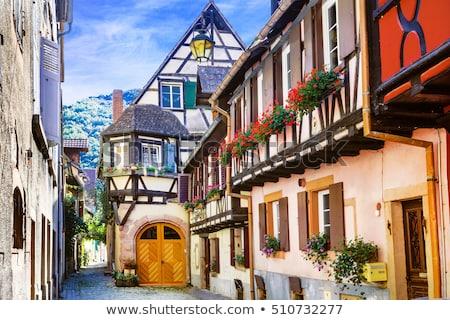 Straat Frankrijk historisch huizen bloem huis Stockfoto © borisb17
